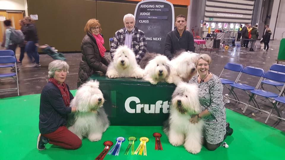 5 Crufts Qualified Snowboot Bears